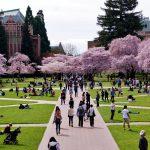 Tujuan Pendidikan Bergengsi, Inilah Daftar Universitas Ternama di Dunia